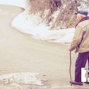 10+ Resources for Independent Seniors